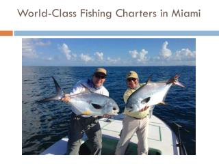 Miami Sport Fishing Charter