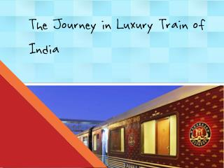 The Royal Journey in Indian Luxury Train