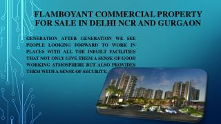 Flamboyant Commercial Property for Sale in Delhi NCR