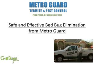 Safe and Effective Bed Bug Elimination from Metro Guard