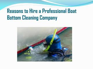 Reasons to Hire a Professional Boat Bottom Cleaning Company