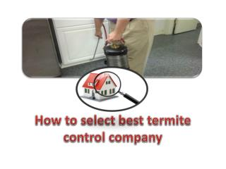 How to select best termite control company
