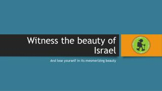 Witness the beauty of Israel