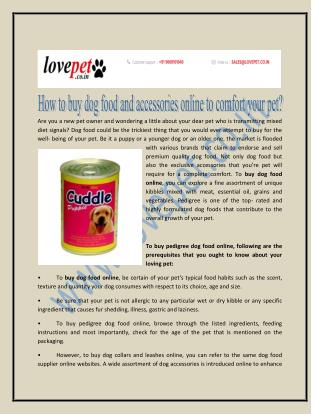 How to buy doy food and accessories online to confort your pet