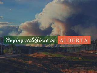 Raging wildfires in Alberta