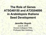 The Role of Genes  AT5G48150 and AT2G04890 in Arabidopsis thaliana  Seed Development