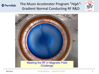 "The Muon Accelerator Program  "" High"" -Gradient  Normal Conducting RF R&D"