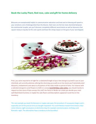 Book the Lucky Plant, Red rose, cake and gift for home delivery