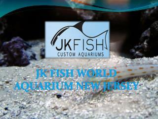 JK Fish World - Aquarium New Jersey