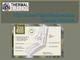 vinyl replacement windows dallas