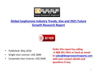 2016 World Isophorone Industry Investment Feasibility and Demand Analysis