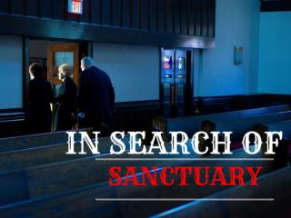 In Search of Sanctuary