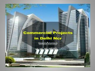 Commercial Projects in Delhi Ncr