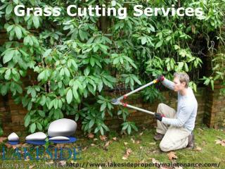 Landscape Property Maintenance Professional Contractor
