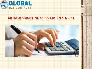 Chief Accounting Officers Email List