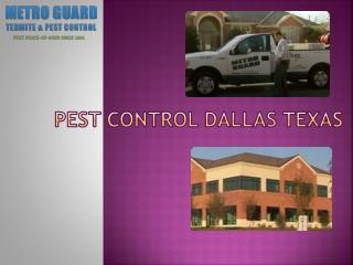 Termite Treatments Dallas