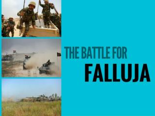 The battle for Falluja