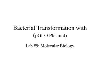 Bacterial Transformation with ( pGLO Plasmid)