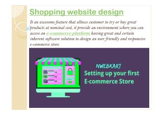 Shopping website design