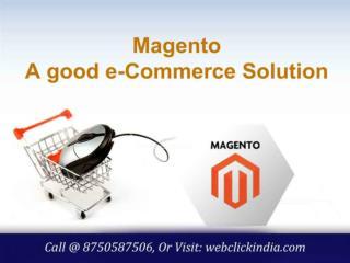 Magento Web Development Company in Delhi