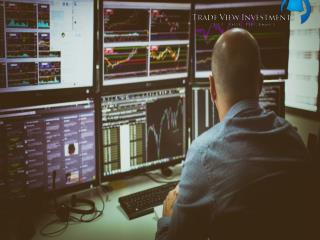 Become Professional in Online Share Trading with Trade View Investments