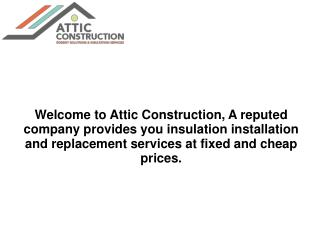 Attic cleaning and repair services