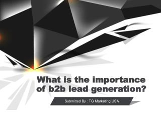 What is The Importance of B2B Lead Generation