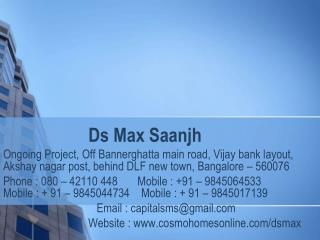 Ds Max Saanjh