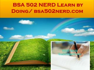 BSA 502 NERD Learn by Doing/ bsa502nerd.com