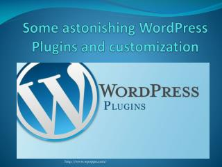 Gain Some Amazing WordPress Plugins and Customization