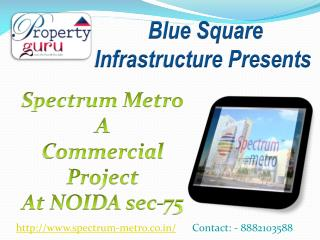 Spectrum Metro | Commercial property in Noida