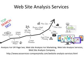 Web Site Analysis Services