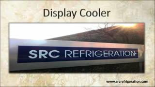 Durable & Stylish Display Cooler