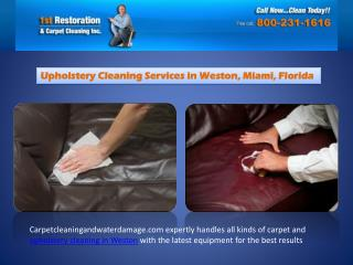 Best Upholstery Cleaning Services in Weston