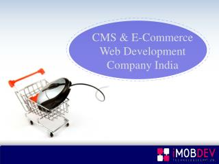 CMS & E-Commerce web development Company India