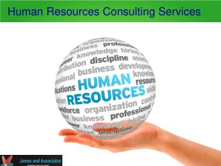 HR consultancy services for your business in sint maarten
