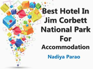 Best Hotel In Jim Corbett National Park For Accommodation