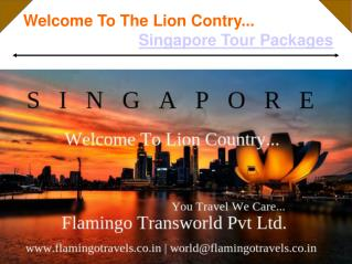 The Lion Country's Trip - Singapore Tour