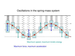 Oscillations in the spring-mass system