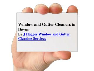 Window Cleaners and Gutter Cleaners in Devon