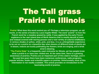 The Tall grass Prairie in Illinois