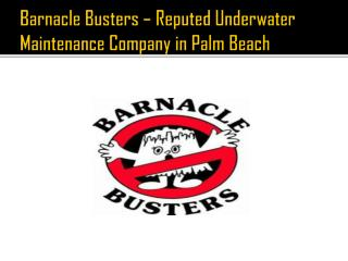 Barnacle Busters – Reputed Underwater Maintenance Company in Palm Beach