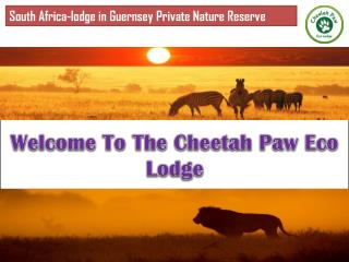 lodge in  Guernsey Private Nature Reserve