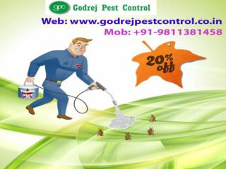 Pest Control Noida Call us on 9811381458