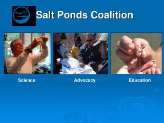 Salt Ponds Coalition