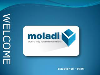 moladi Building System