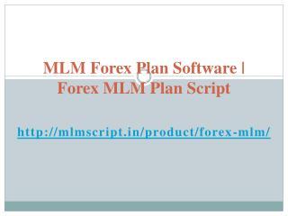 Forex MLM Plan Script | MLM Forex Plan Software