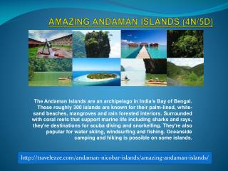 AMAZING ANDAMAN ISLANDS (4N/5D)