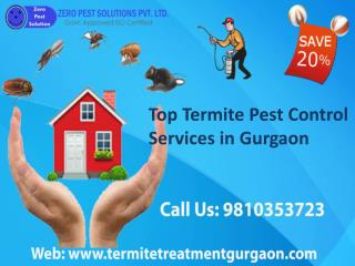 Top termite pest control services in gurgaon call 9810353723