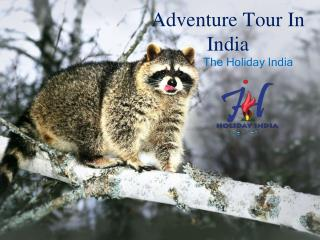 Advenure Tour In India